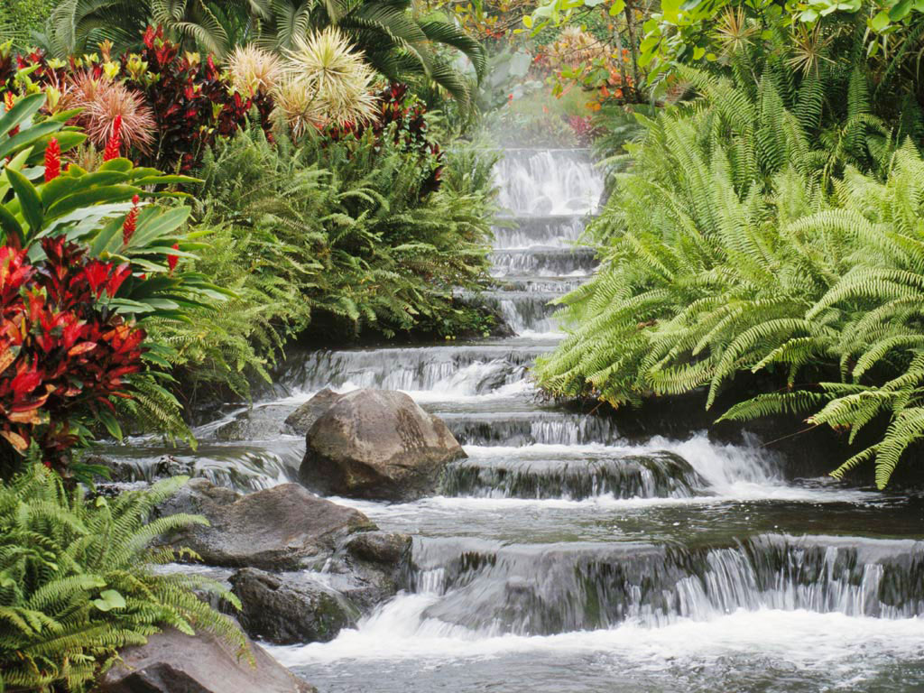 Ein fließender Wasserfall, umrahmt von Blumen.